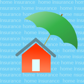 Why I Won't Be Getting Home Insurance This Year